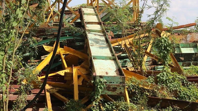 Người dân ngao ngán nhìn cầu Long Đại 'mọc cây' - ảnh 2