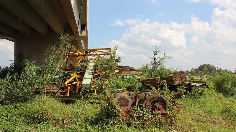 Người dân ngao ngán nhìn cầu Long Đại 'mọc cây' - ảnh 4