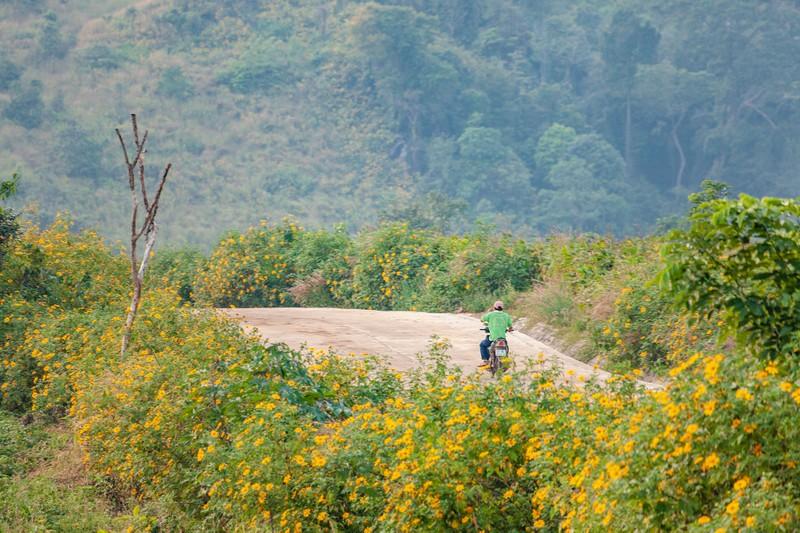 Ngỡ ngàng trước cảnh đẹp trên núi lửa Chư Đăng Ya - ảnh 16