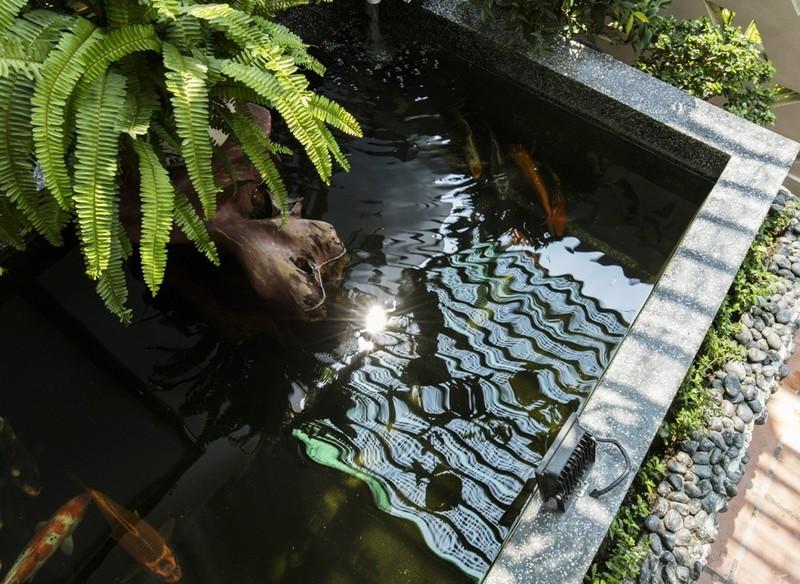 Thiết kế ấn tượng với hồ cá đáy kính tầng 2 - ảnh 4