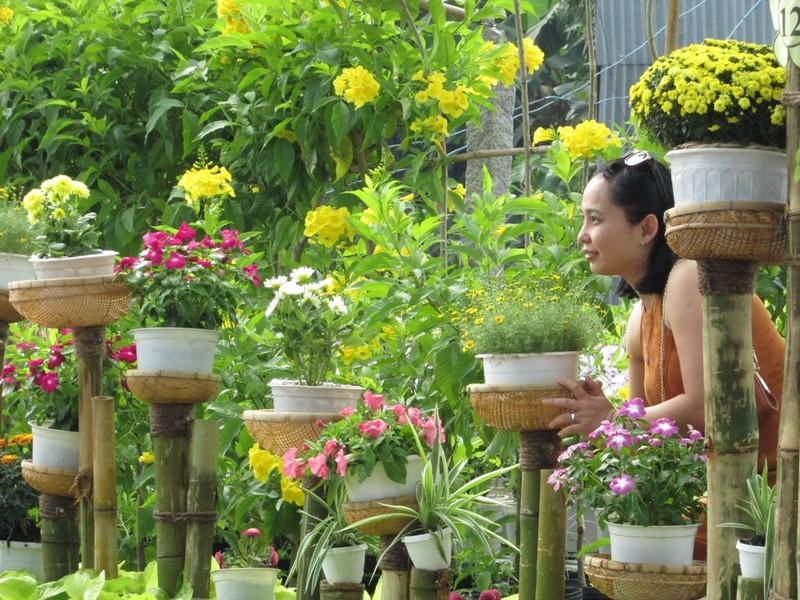 Về Sa Đéc ngắm ngàn sắc hoa - ảnh 3