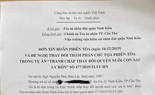 Vụ Nhật Kim Anh đòi quyền nuôi con: Bị đơn muốn thay thẩm phán - ảnh 1