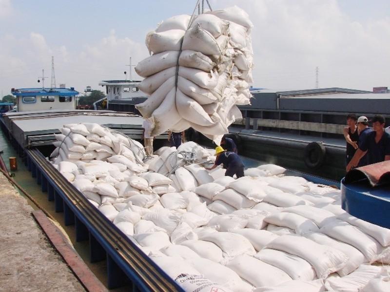 Gạo 'đóng băng' tại cảng, thất thoát 350 triệu đồng/ngày - ảnh 1