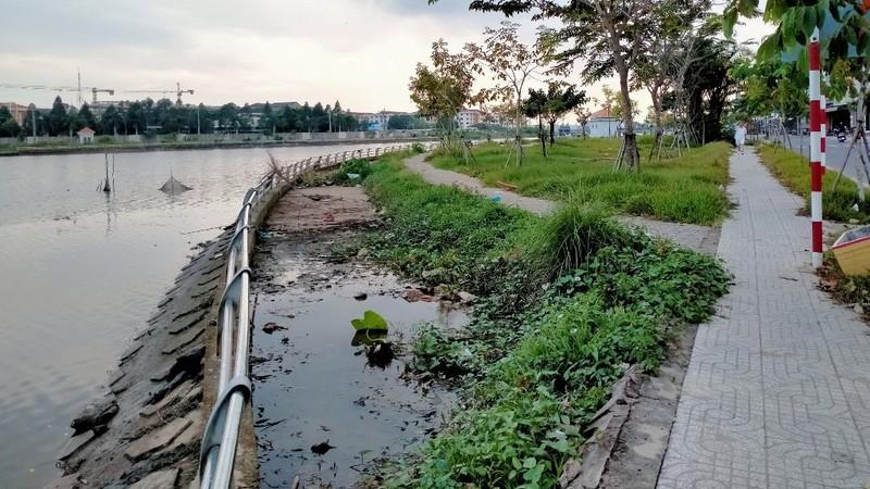Lãnh đạo Cần Thơ nhận khuyết điểm về công trình hồ Búng Xáng - ảnh 4