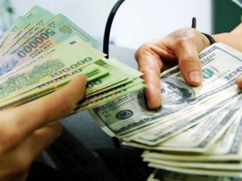 Dự trữ ngoại hối kỷ lục 45 tỉ USD, tỉ giá sẽ ra sao ? - ảnh 1