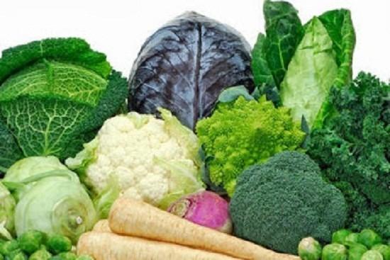 4 loại thực phẩm bệnh nhân ung thư nên ăn - ảnh 1