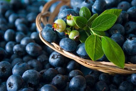 Những thực phẩm chống lão hóa tốt nhất - ảnh 1