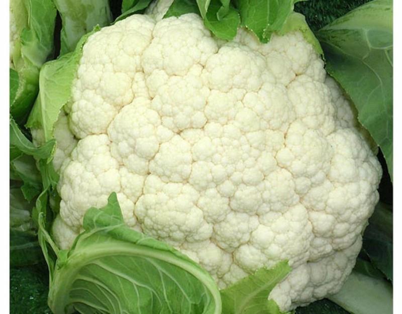 Súp lơ (bông cải) giúp đốt cháy mỡ trong cơ thể.