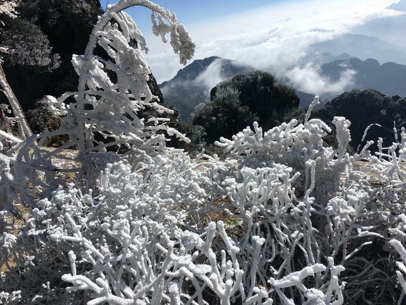 Ngắm băng tuyết phủ trắng đỉnh Fansipan - ảnh 11