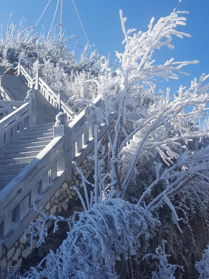 Ngắm băng tuyết phủ trắng đỉnh Fansipan - ảnh 14
