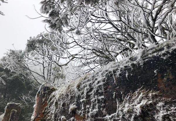 Ngắm tuyết rơi dày, phủ trắng đường ở Sa Pa - ảnh 8