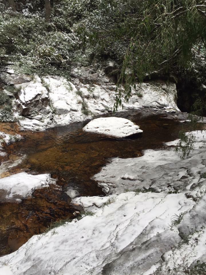 Ngắm tuyết rơi dày, phủ trắng đường ở Sa Pa - ảnh 6
