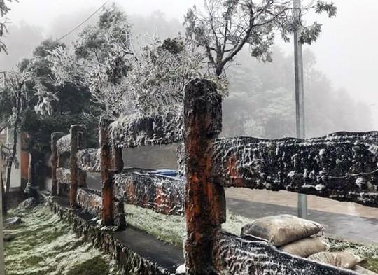 Ngắm tuyết rơi dày, phủ trắng đường ở Sa Pa - ảnh 7
