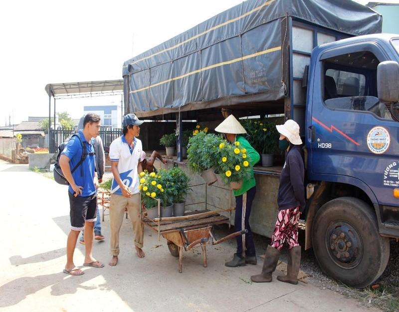 Nông dân đang tất bật vận chuyển hoa kịp giao cho các thương lái.