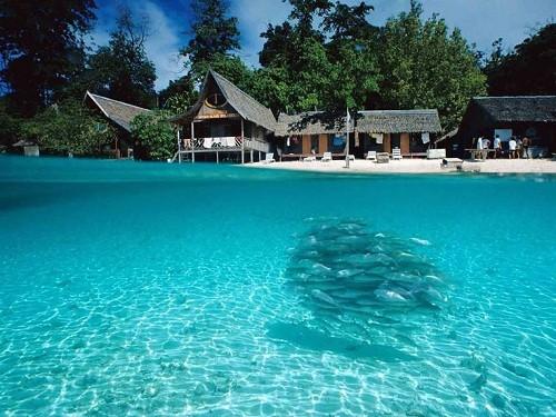 Côn Đảo vào tốp 10 bãi biển thân thiện với môi trường - ảnh 7