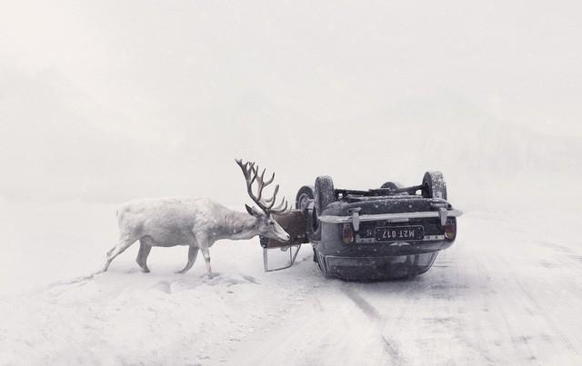 Giải quốc gia - giải nhất nhóm ảnh Cộng hòa Séc - tác giả Martin Stranka