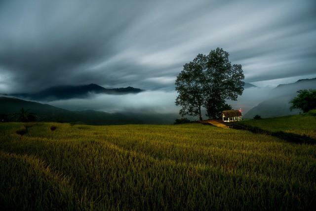 Bức ảnh của tay máy Vinh Dao đoạt giải ba hạng mục ảnh quốc gia.