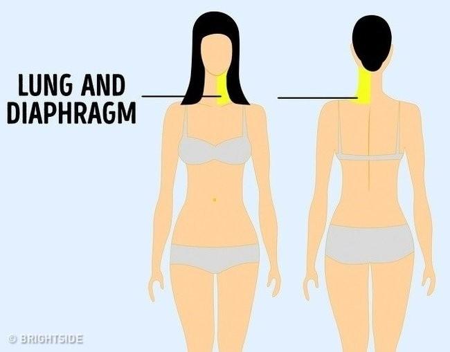 9 vị trí đau trên cơ thể là dấu hiệu của bệnh nguy hiểm - ảnh 2