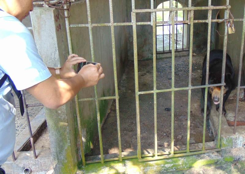 Thực hư thú nuôi bị ngược đãi ở Công viên nước Củ Chi - ảnh 2