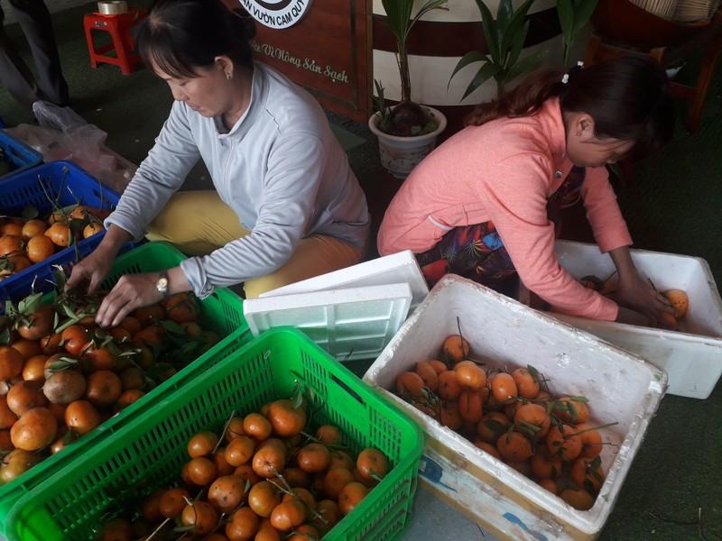 Chủ nhà ăn trái cây trước khách mới dám ăn sau - ảnh 1