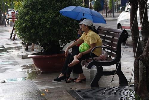 Lắp đặt băng ghế trên phố đi bộ Nguyễn Huệ - ảnh 2
