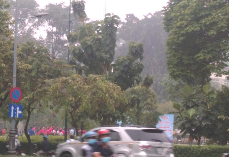 Sài Gòn bảng lảng sương mù - ảnh 1