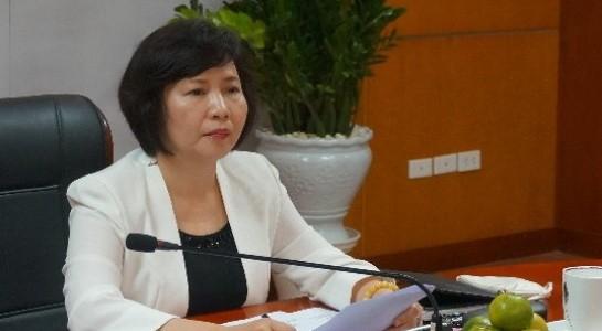 Thủ tướng chỉ đạo làm rõ tài sản bà Hồ Thị Kim Thoa - ảnh 1