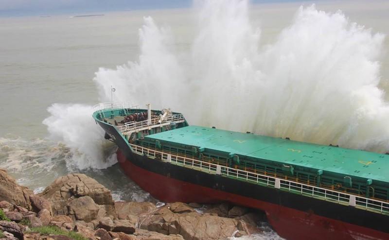 Thảm họa chìm tàu  bão số 12 ở Quy Nhơn, do đâu? - ảnh 1