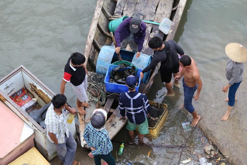 Dân làng bè Long Sơn vẫn chưa rời khu vực để tránh bão số 9 - ảnh 3