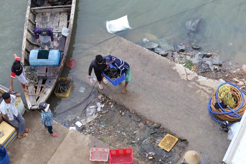 Dân làng bè Long Sơn vẫn chưa rời khu vực để tránh bão số 9 - ảnh 4