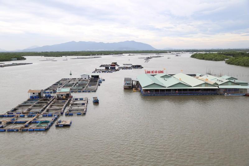 Dân làng bè Long Sơn vẫn chưa rời khu vực để tránh bão số 9 - ảnh 1