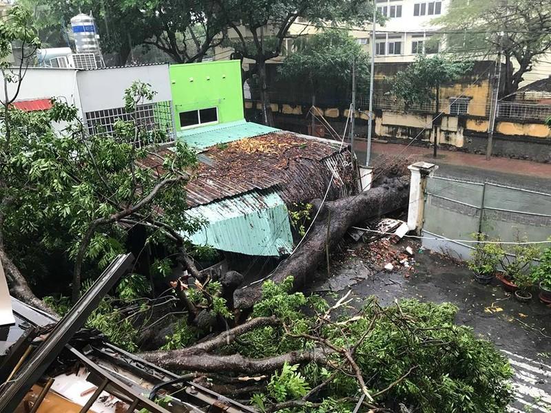 Bão vào Vũng Tàu, mưa to hoành hành khắp miền Nam - ảnh 5