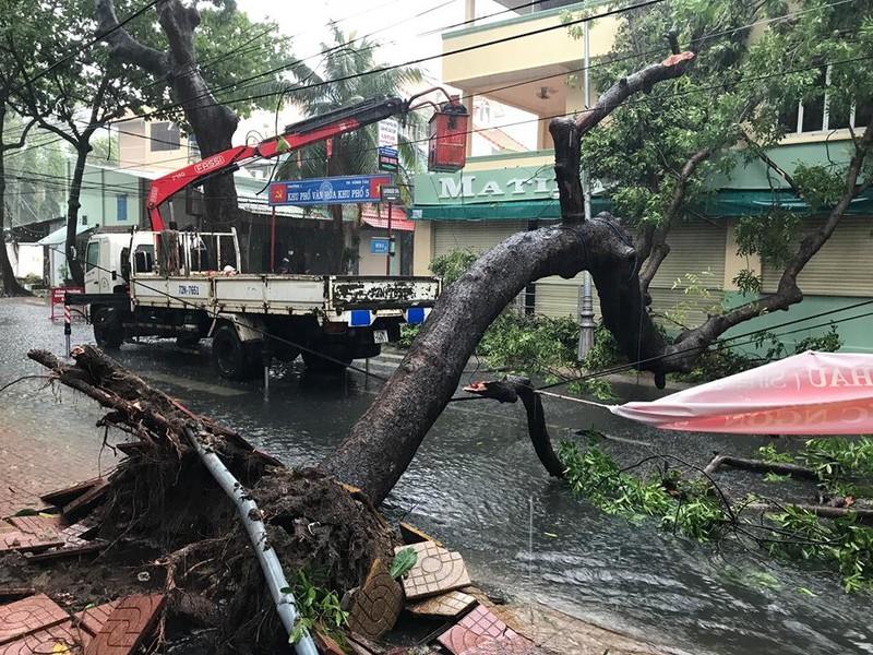 Bão vào Vũng Tàu, mưa to hoành hành khắp miền Nam - ảnh 6