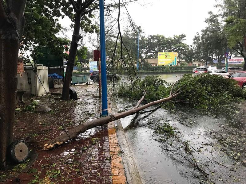 Bão vào Vũng Tàu, mưa to hoành hành khắp miền Nam - ảnh 2
