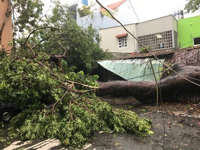 Bão vào Vũng Tàu, mưa to hoành hành khắp miền Nam - ảnh 4
