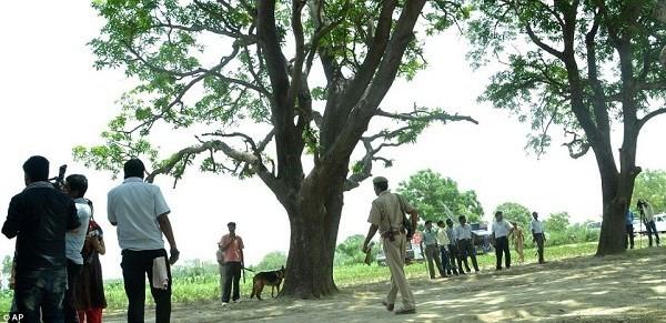 Ấn Độ bắt ba anh em hiếp dâm hai chị em thiếu nữ rồi treo lên cây xoài - ảnh 2