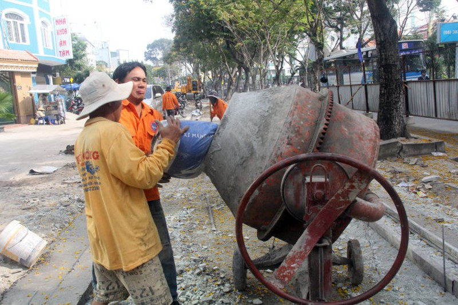 Đốn hạ 116 cây xanh cửa ngõ sân bay Tân Sơn Nhất  - ảnh 2
