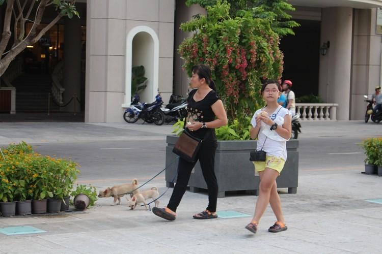 Chiều cuối tuần rộn rã ở phố đi bộ Nguyễn Huệ - ảnh 6