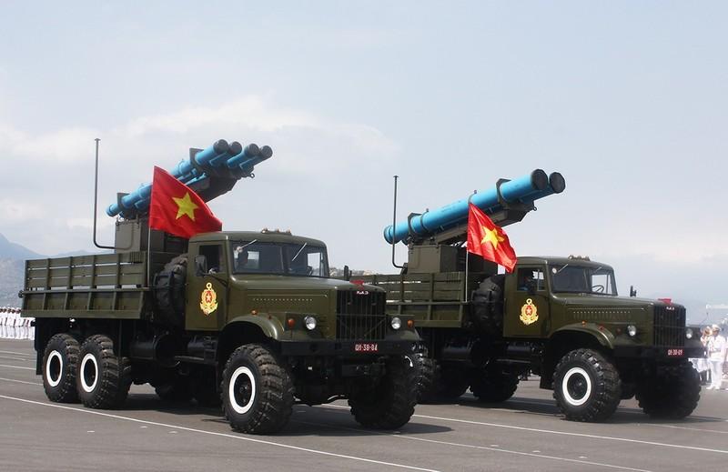 Tự hào sức mạnh Hải quân Việt Nam  - ảnh 12