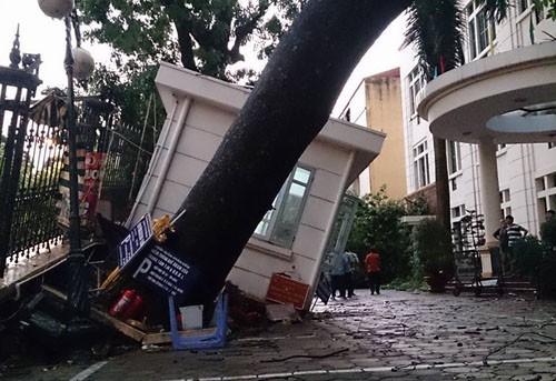 Chùm ảnh Hà Nội tơi tả đón cầu vồng sau cơn giông bất ngờ  - ảnh 10