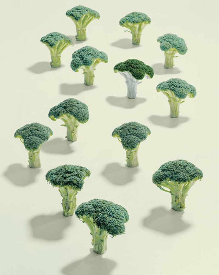 17 thực phẩm tăng cường tuổi thọ - ảnh 2