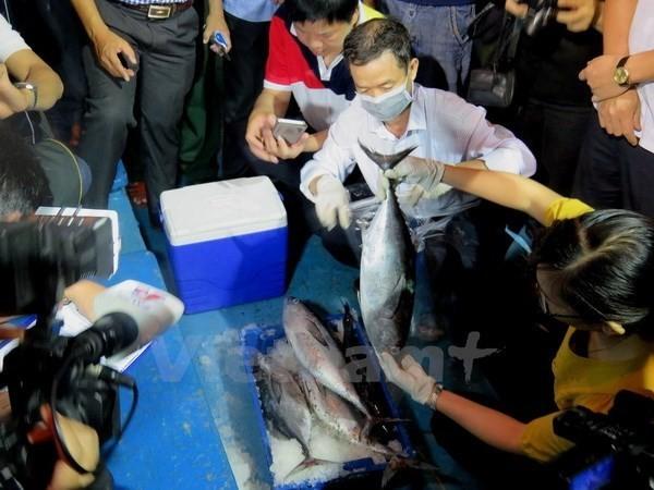 Lập hội đồng khoa học quốc gia để tìm nguyên nhân cá chết - ảnh 1