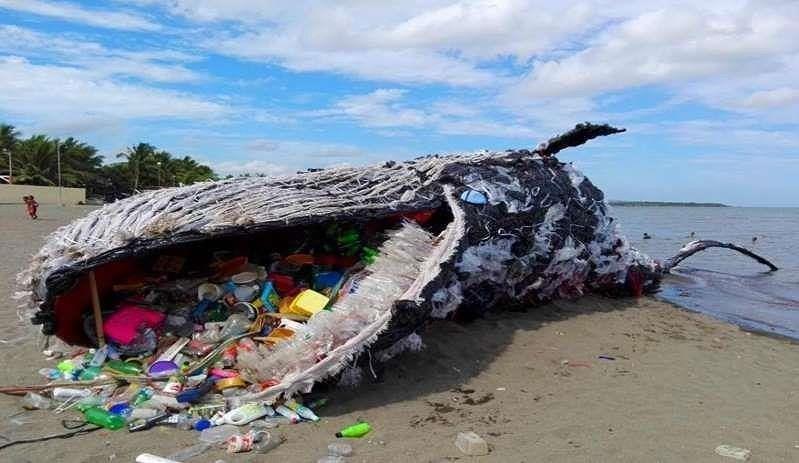 3 gợi ý để bạn tuyên chiến với rác thải nhựa - ảnh 3