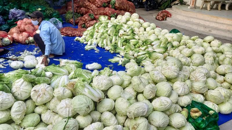 Phân phát 15 tấn rau củ đến người dân thôn Văn Lâm - ảnh 1