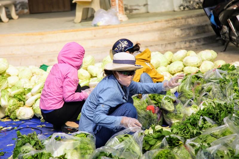 Phân phát 15 tấn rau củ đến người dân thôn Văn Lâm - ảnh 3