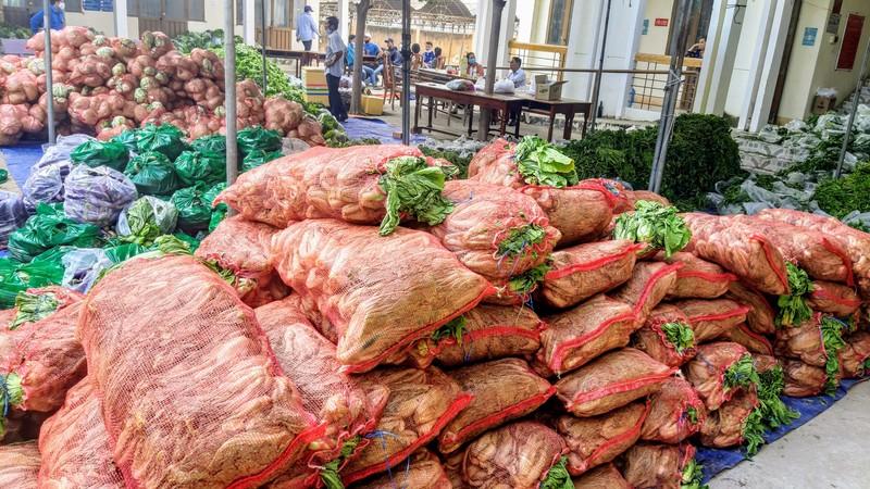 Phân phát 15 tấn rau củ đến người dân thôn Văn Lâm - ảnh 6