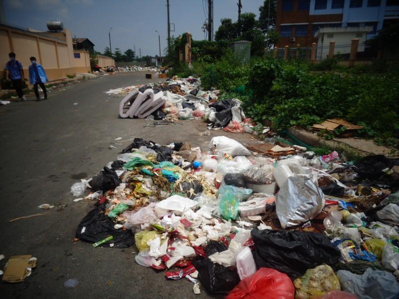 Bãi rác giữa phố quá ô nhiễm! - ảnh 3