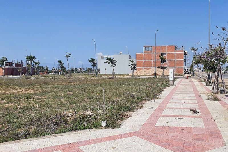 Bắt nữ chủ tịch HĐQT công ty mua sỉ 262 lô đất ở Phú Yên - ảnh 2