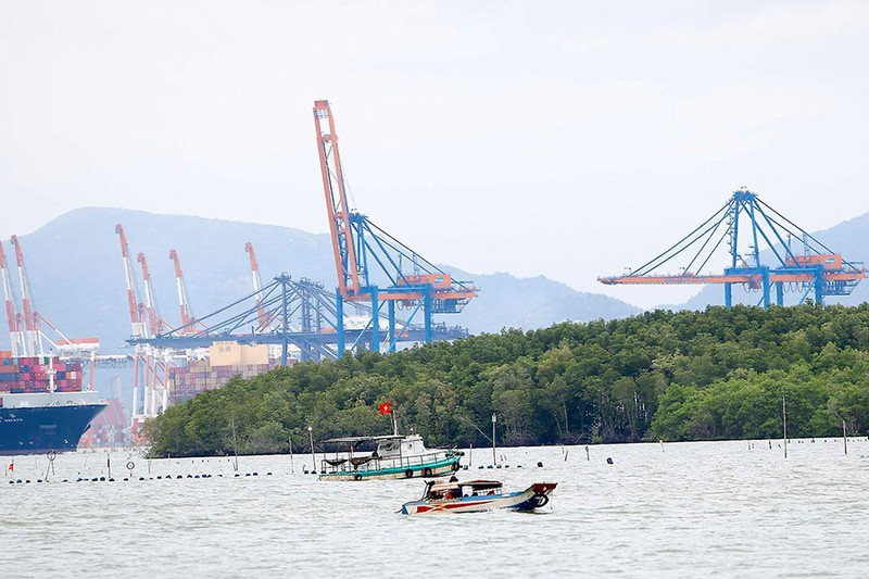 Đề xuất làm cảng Sài Gòn lớn ngang cảng Singapore, Hong Kong - ảnh 1
