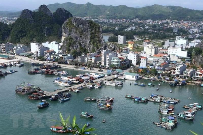 Năm 2020, giá đất Phú Quốc, Vân Đồn có xu hướng tăng - ảnh 1